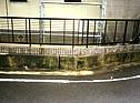 敷地廻りの壁の汚れ