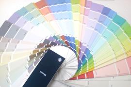 色彩決定まで